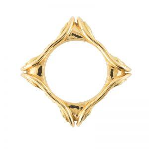 Ionic Ring 1