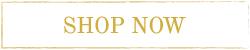 Shop Now Icon