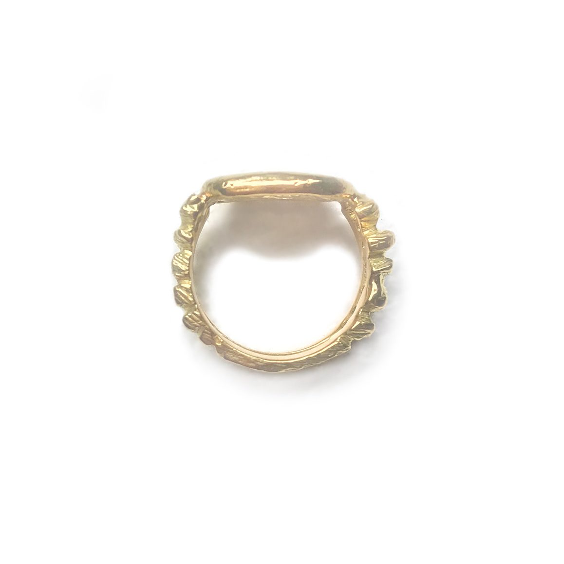 SPQR Ring Side Copy